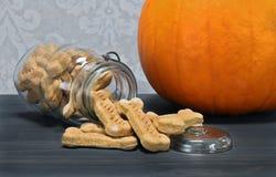南瓜骨头塑造了溢出在柜台上的狗曲奇饼 免版税库存图片