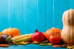 南瓜,蕃茄,石榴,秋天的图片生叶 免版税图库摄影