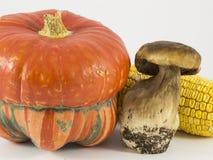 南瓜,蘑菇,在白色背景的玉米 免版税库存图片