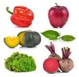 南瓜,青苔,苹果,茶,甜菜根,胡椒 免版税库存照片