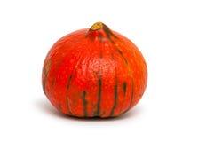 南瓜 红颜色 免版税库存图片