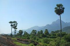 南的印度 免版税库存照片
