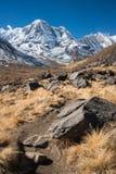 南的Mt.Annapurna,安纳布尔纳峰Himal,尼泊尔。 免版税库存图片