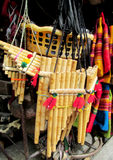 南美国的长笛 库存照片