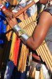 南美国音乐的当地人 库存图片