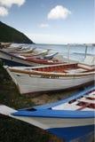 南美委内瑞拉玛格丽塔岛曼萨尼约角 免版税图库摄影