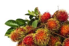南美异乎寻常的果子 图库摄影
