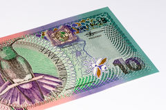 南美currancy钞票 库存照片