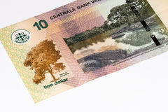 南美currancy钞票 免版税图库摄影