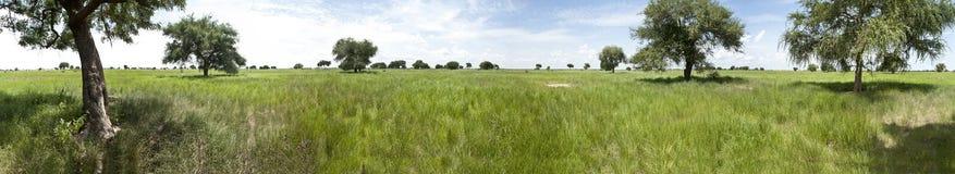 南苏丹的300度全景 免版税库存照片