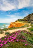 南葡萄牙海岸线在春天 免版税图库摄影