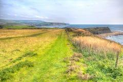 南西海岸道路Kimmeridge海湾在Lulworth小海湾东部和在多西特海岸的英国英国Kimmeridge村庄附近 免版税库存照片