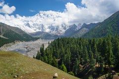 南迦帕尔巴特峰从神仙的草甸,基尔吉特,巴基斯坦的山景 免版税图库摄影