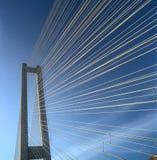 南部桥梁的片段 免版税图库摄影