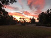 南部的冬天日出 库存图片