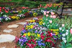 南部的春天庭院 库存图片