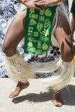 南部的舞蹈家看见 免版税库存图片