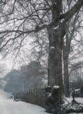 南部的雪风暴 库存照片
