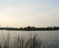 南部的水 免版税库存照片
