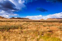 南部非洲的干旱台地高原草原 库存图片
