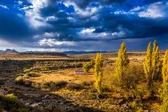 南部非洲的干旱台地高原草原 图库摄影