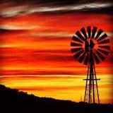 南部非洲的干旱台地高原极乐 免版税库存图片
