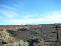 南部非洲的干旱台地高原篱芭 库存图片