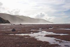 南部04海湾海岸的hawkes 免版税库存照片