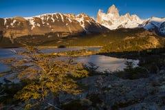 南阿根廷的风景 fitz roy 免版税图库摄影