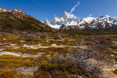 南阿根廷的风景 fitz roy 免版税库存照片