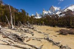 南阿根廷的风景 fitz roy 图库摄影