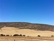 南非大草原农田 库存图片