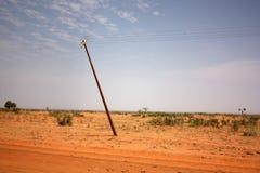 南非洲横向madikwe的自然储备 库存照片