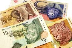 南非洲的兰特 免版税库存照片