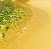 南非海岸线 库存照片