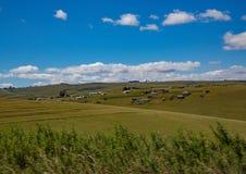 南非的东开普省的风景 免版税库存照片