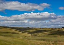 南非的东开普省的风景 库存图片