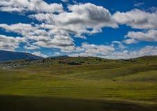南非的东开普省的风景 库存照片