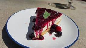 南非蓝色莓果乳酪蛋糕 免版税库存照片