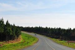 南非,东部,普马兰加省省 免版税图库摄影