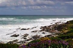 南非,庭院路线 库存照片