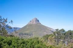南非,开普敦,狮子头, UAR 免版税库存照片