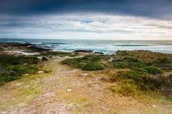 南非洲海角好的希望 免版税库存照片