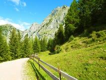 南Tyrolean山概要 免版税库存照片