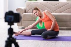 博克和vlog的孕妇录音录影 免版税库存图片