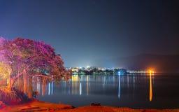 博克拉湖边在晚上,尼泊尔 免版税库存照片