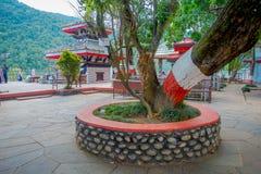 博克拉,尼泊尔- 2017年9月04日:公众jarden与接近Tal Barahi寺庙的一棵巨大的树,位于中心  免版税图库摄影