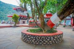 博克拉,尼泊尔- 2017年9月04日:有一棵巨大的树的公园接近Tal Barahi寺庙,位于中心  库存照片