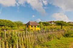 博内尔岛染黄在家和仙人掌-荷属安的列斯篱芭  库存照片