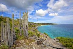 博内尔岛海岸线 免版税库存照片
